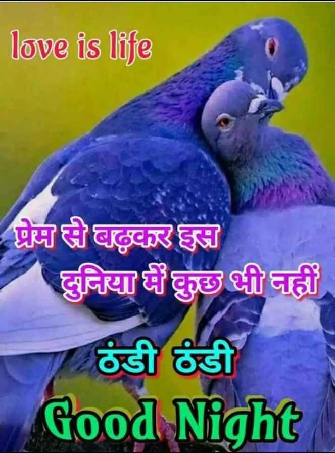 🌙 શુભરાત્રી - love is life - प्रेम से बढ़कर इस दुनिया में कुछ भी नहीं ठंडी ठंडी Good Night - ShareChat