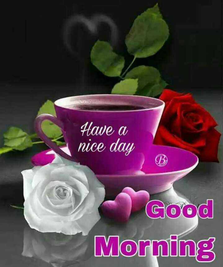 શુભ સવાર - Have a nice day Good Morning - ShareChat
