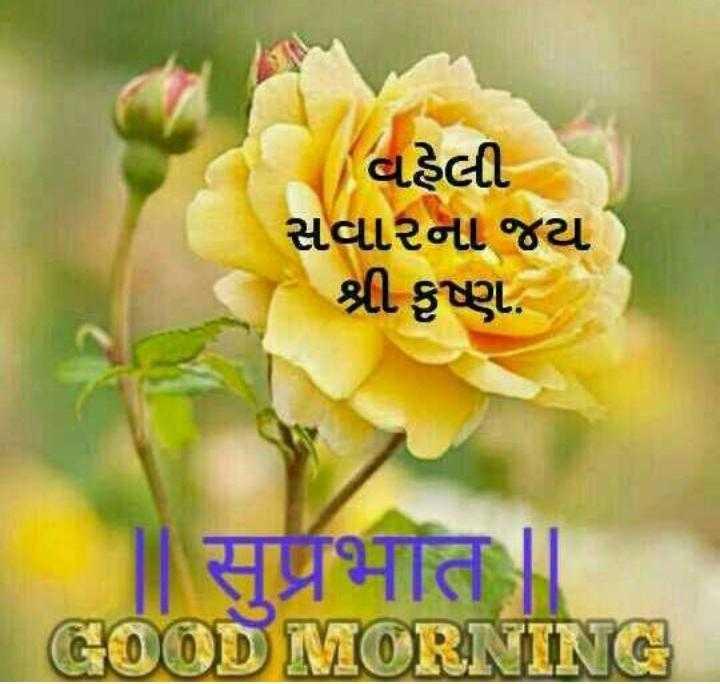 શુભ સવાર - વહેલી સવારના જય શ્રી કૃષ્ણ . सुप्रभात । GOOD MORNING - ShareChat