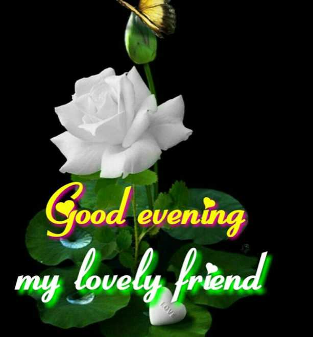 શુભ સાંજ - Good evening my lovely friend LOVE - ShareChat