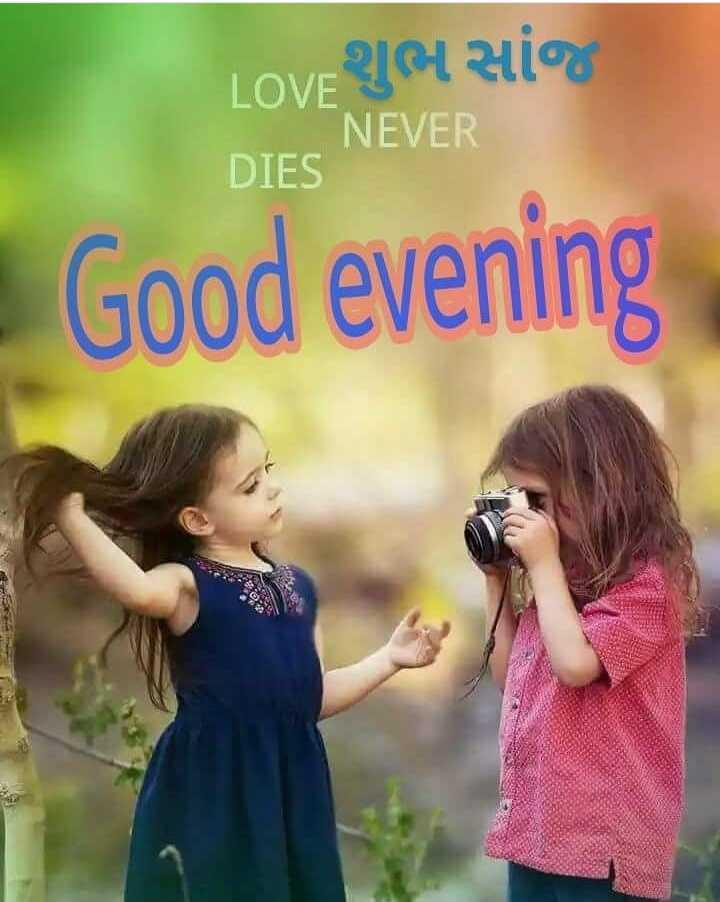 🌆 શુભ સાંજ - LOVE JAL HIG NEVER DIES Good evening . - ShareChat