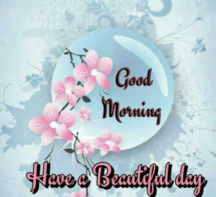 🙏 શ્રદ્ધાંજલિ - Good Morning Have a Beautiful day - ShareChat