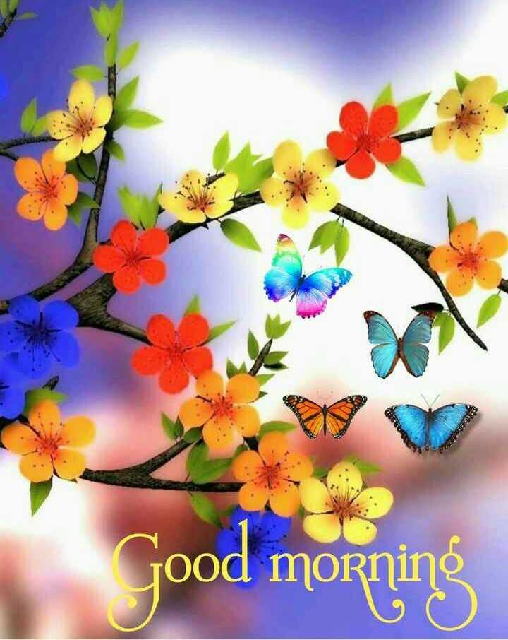 🙏 શ્રદ્ધાંજલિ 💐 - Good morning - ShareChat