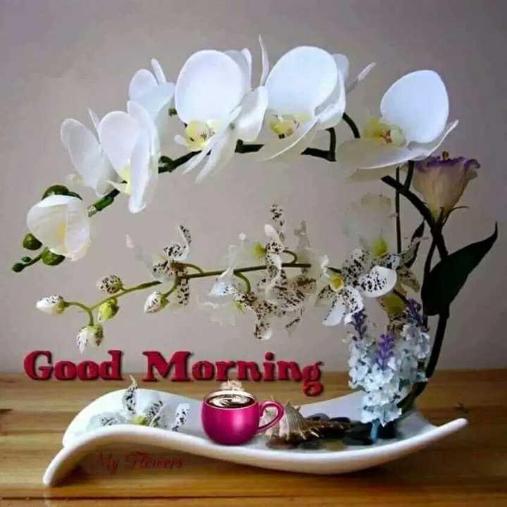 🙏 શ્રદ્ધાંજલિ - Good Morning sun - ShareChat