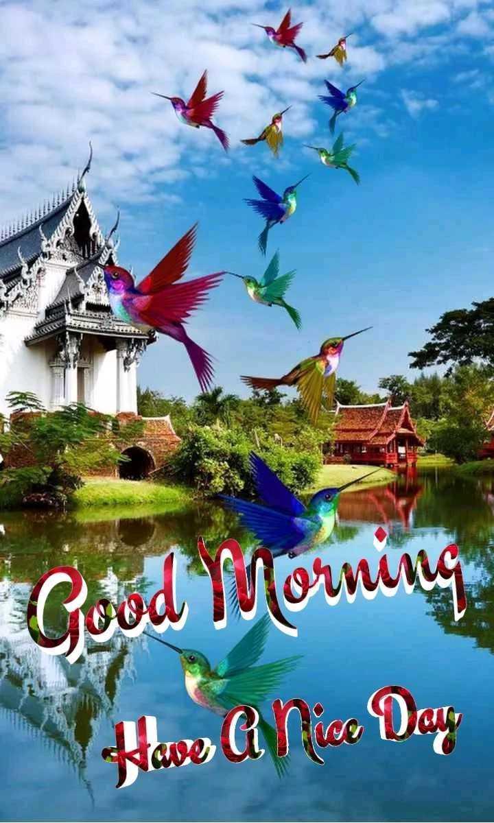 🙏 શ્રદ્ધાંજલિ 💐 - Good Morning hwe A Nice Day - ShareChat