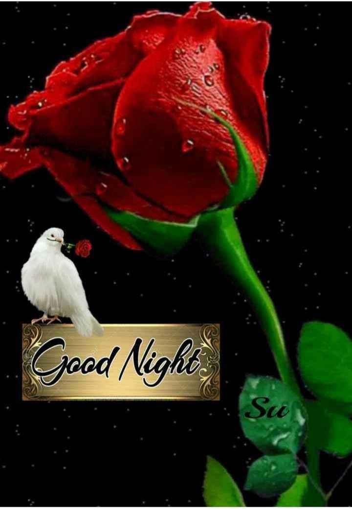 🙏 શ્રદ્ધાંજલિ 💐 - Good Night - ShareChat