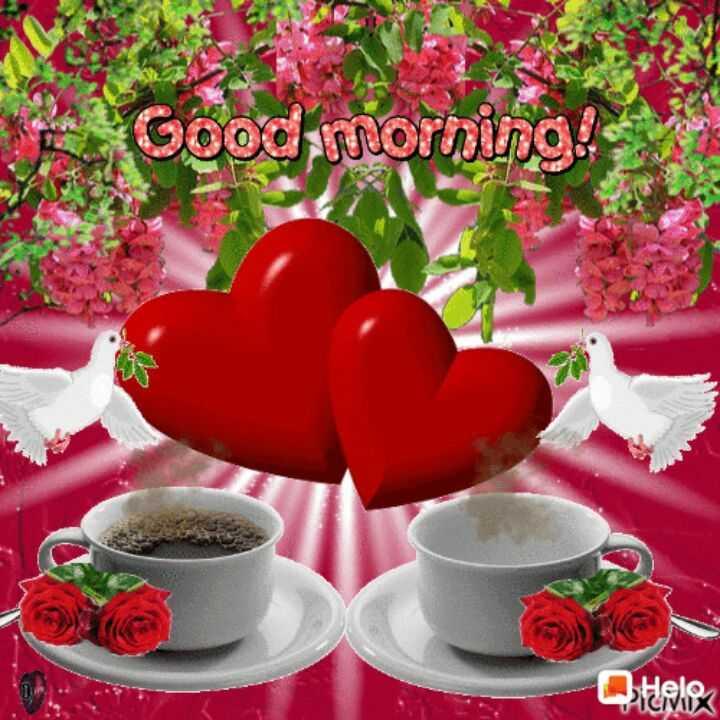 🙏 શ્રદ્ધાંજલિ - Good morning ! Quale - ShareChat