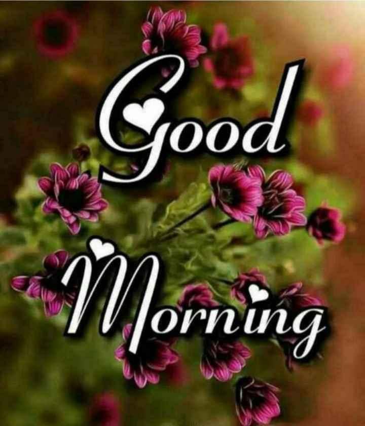 💰સિક્કા સાથે મસ્તીના વિડિઓ💰 - yood Morning Jorning - ShareChat