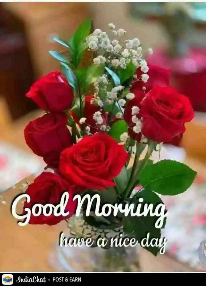 🌅 સુપ્રભાત 🙏 - Good Morning have a nice day IndiaChat - POST & EARN - ShareChat
