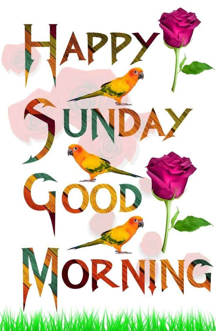 🌅 સુપ્રભાત 🙏 - Happy SUNDAY Good MORNING - ShareChat