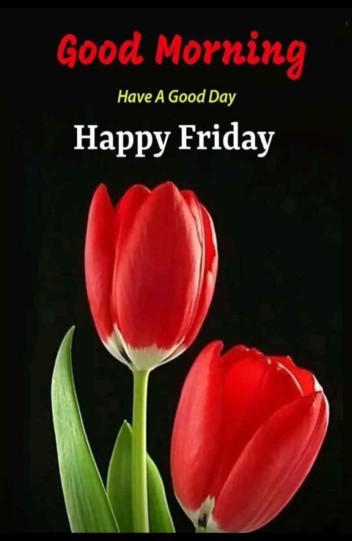 🌅 સુપ્રભાત 🙏 - Good Morning Have A Good Day Happy Friday - ShareChat