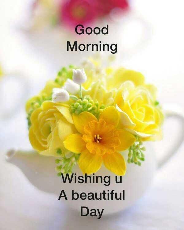 🌅 સુપ્રભાત - Good Morning Wishing u A beautiful Day - ShareChat