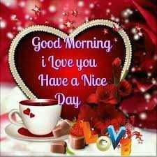 🌅 સુપ્રભાત 🙏 - Good Morning i love you Have a Nice Day - ShareChat