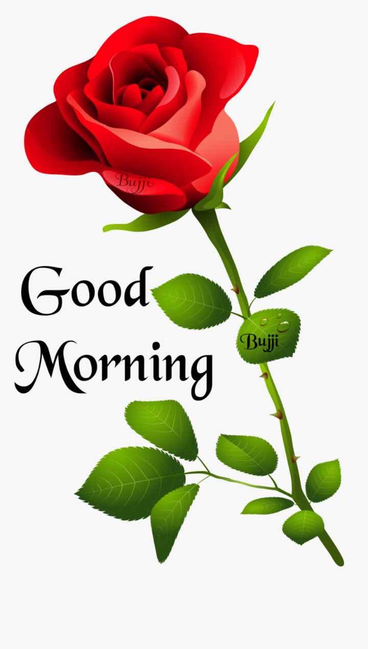 🌅 સુપ્રભાત - Bujj Good Morning Bujji - ShareChat