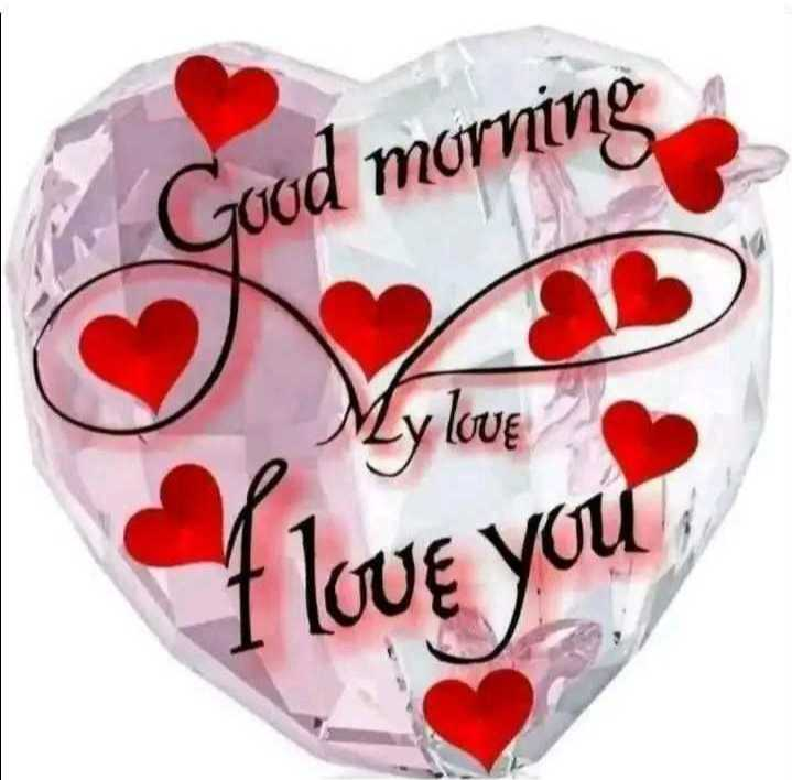 🌅 સુપ્રભાત 🙏 - Good morning My love I love you - ShareChat