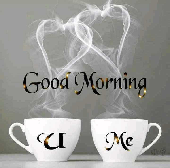 🌅 સુપ્રભાત 🙏 - Good Morning CUM - ShareChat