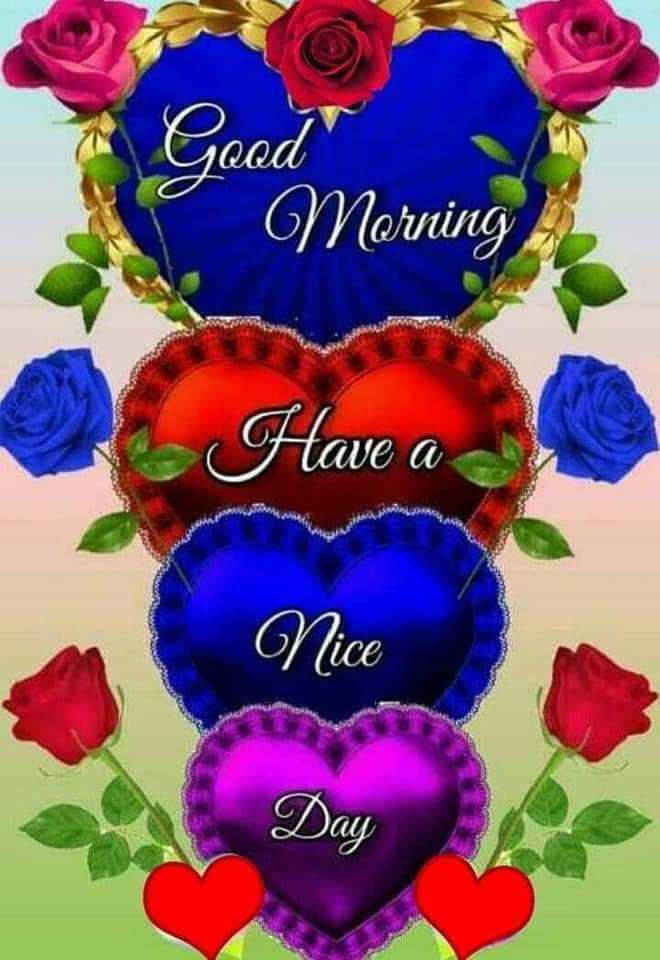 🌅 સુપ્રભાત 🙏 - Good Merning Have a Nice Day - ShareChat