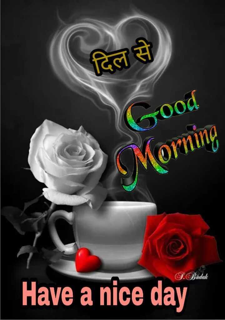 🌅 સુપ્રભાત 🙏 - दिल से Good Morning S . Budak Have a nice day - ShareChat