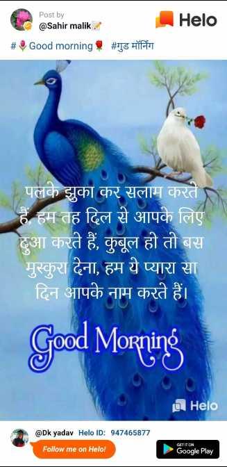 🌅 સુપ્રભાત - Post by @ Sahir malik . _ _ _ # Good morning , # गुड मॉर्निंग पलके झुका कर सलाम करते हैं हम तह दिल से आपके लिए दुआ करते हैं , कुबूल हो तो बस मुस्कुरा देना , हम ये प्यारा सा दिन आपके नाम करते हैं । Good Morning @ Dk yadav ID : 947465877 Follow me on ! GATITOR - ShareChat