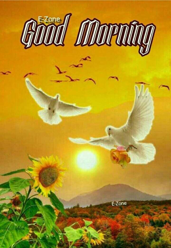 🌅 સુપ્રભાત 🙏 - E - Zone Good Morning E - Zone - ShareChat