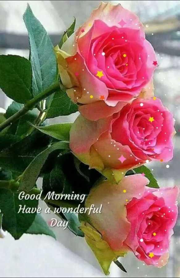 🌅 સુપ્રભાત - Good Morning Have a wonderful Day - ShareChat