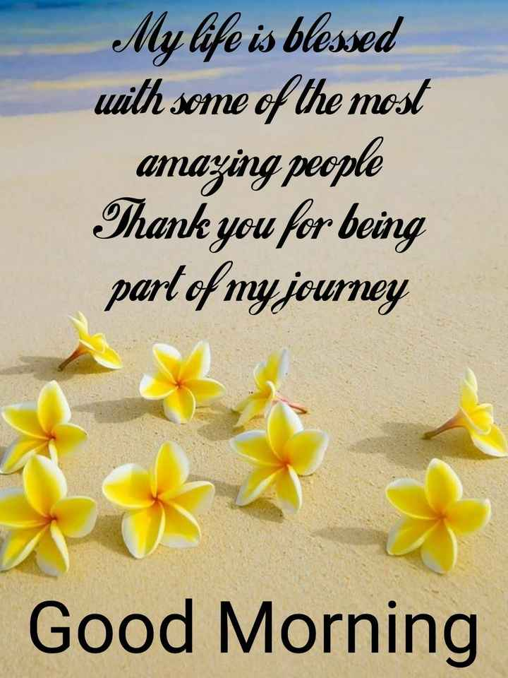🌅 સુપ્રભાત - My life is blessed with some of the most amazing people Thank you for being part of my journey Good Morning - ShareChat