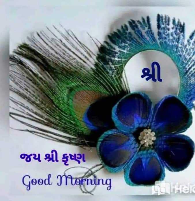 🌅 સુપ્રભાત 🙏 - જય શ્રી કૃષ્ણ Good Morning Caiei - ShareChat