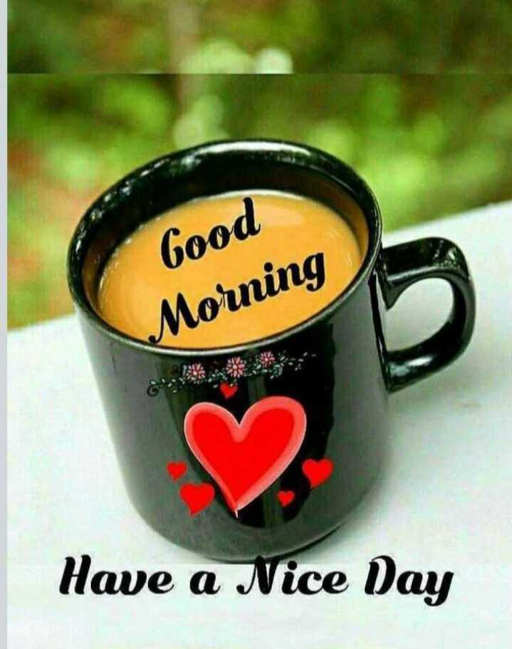 🌅 સુપ્રભાત 🙏 - Good Morning Have a Nice Day - ShareChat
