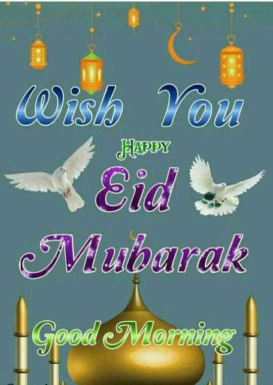 🌅 સુપ્રભાત 🙏 - HAPPY Wislo You Eid ! Mubarak Good Morning - ShareChat