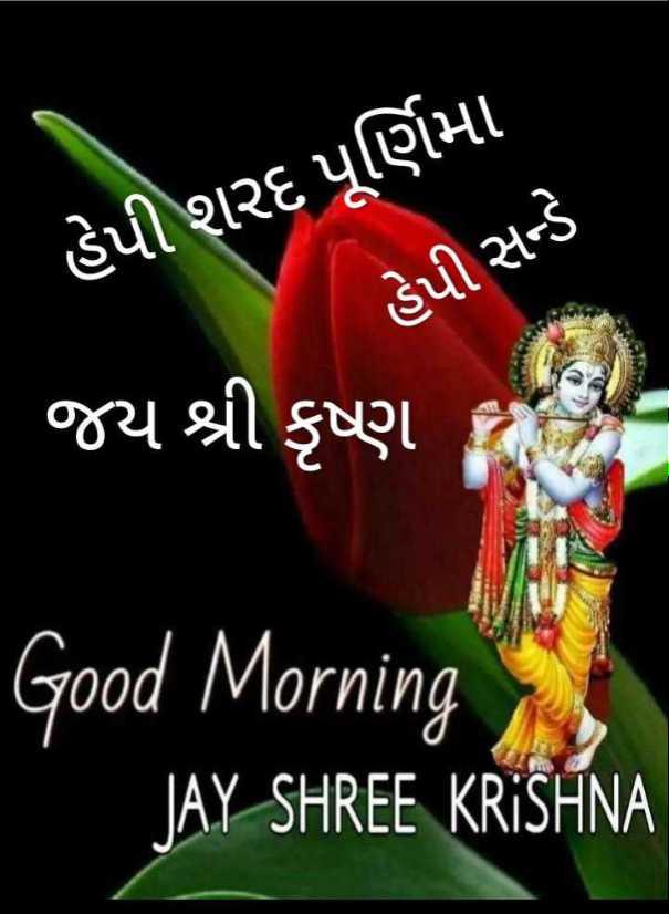 🌅 સુપ્રભાત 🙏 - હેપી શરદ પૂર્ણિમા હેપી સન્ડે જય શ્રી કૃષ્ણ Good Morning JAY SHREE KRISHNA - ShareChat