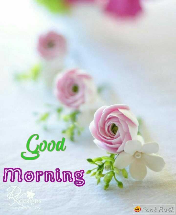 🌅 સુપ્રભાત 🙏 - Good morning lesi2118 ) Font Rush - ShareChat