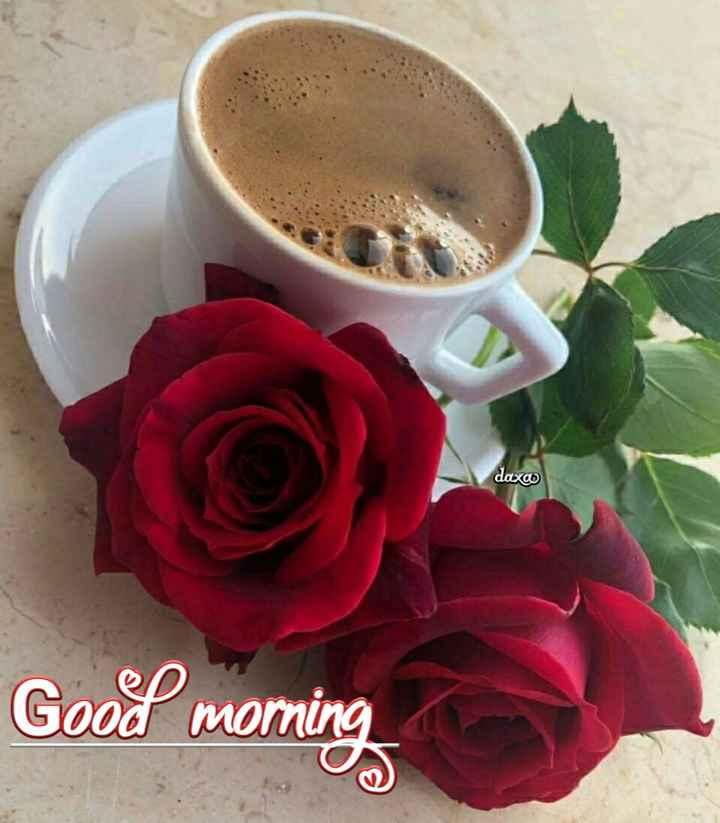 🌅 સુપ્રભાત 🙏 - daxo Good morning - ShareChat