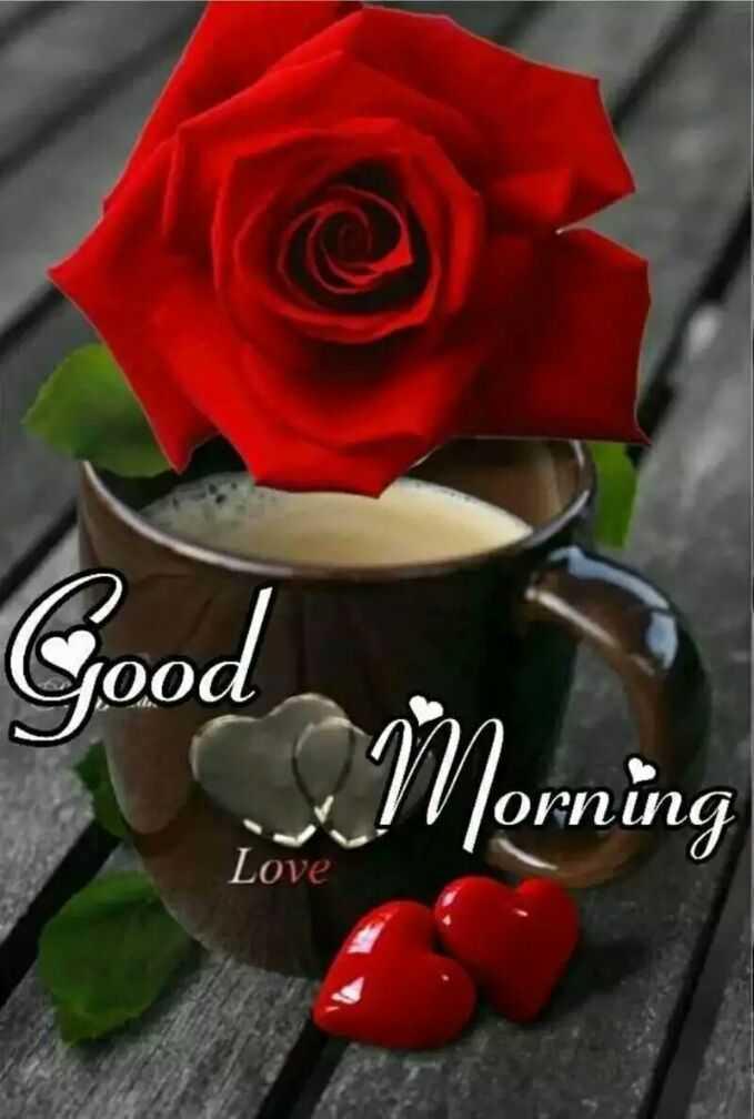 🌅 સુપ્રભાત - Good , Morning Love - ShareChat