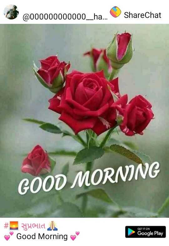 🌅 સુપ્રભાત 🙏 - @ 000000000000 _ ha . . . ShareChat GOOD MORNING # Lyold 1 Good Morning GET IT ON Google Play - ShareChat