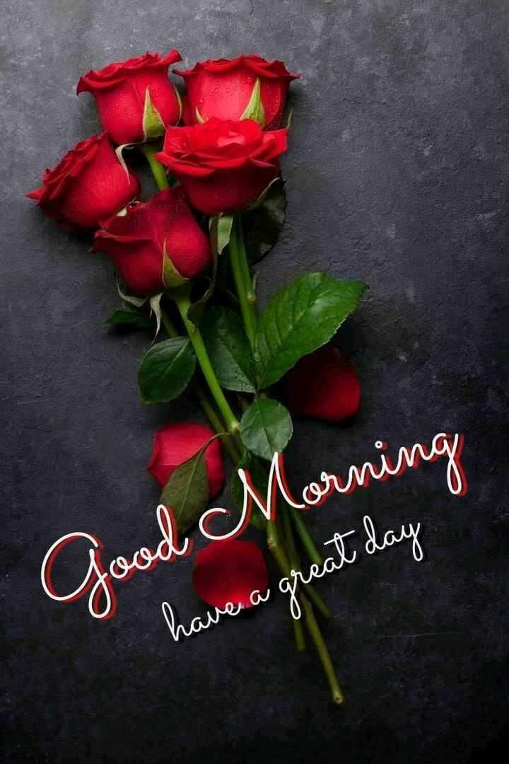 🌅 સુપ્રભાત 🙏 - Morning Good d at day have a great day - ShareChat