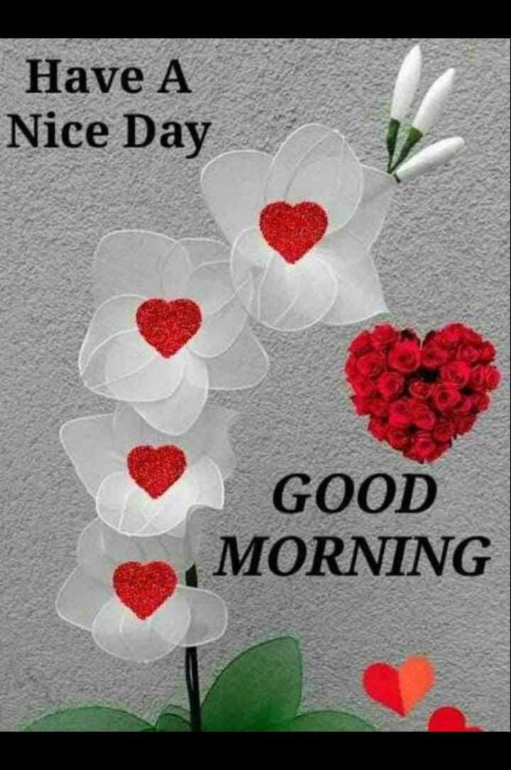 🌅 સુપ્રભાત - Have A Nice Day GOOD MORNING - ShareChat