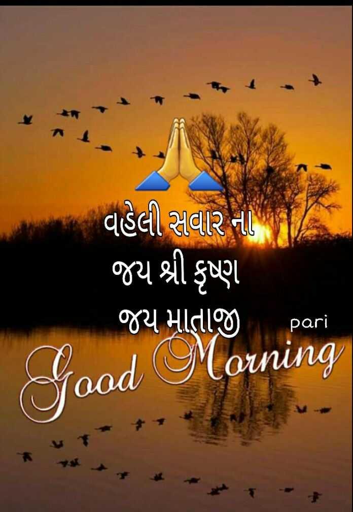 🌅 સુપ્રભાત 🙏 - વહેલી સવાર નો જય શ્રી કૃષ્ણ જય માતાજી pari od Morning - ShareChat