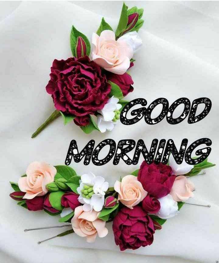 🌅 સુપ્રભાત 🙏 - GOOD MORNING - ShareChat