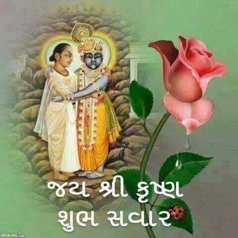 🌅 સુપ્રભાત 🙏 - જ્ય શ્રી કૃષ્ણ શુભ સવાર , imikimi . com - ShareChat