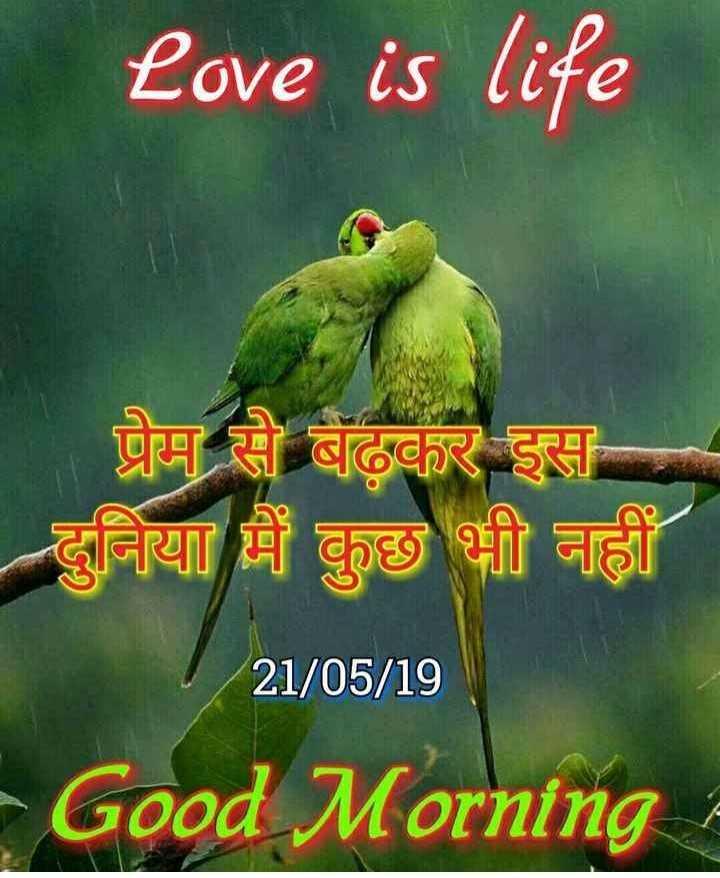🌅 સુપ્રભાત 🙏 - Love is life प्रेम से बढ़कर इस दुनिया में कुछ भी नहीं 21 / 05 / 19 Good Morning - ShareChat