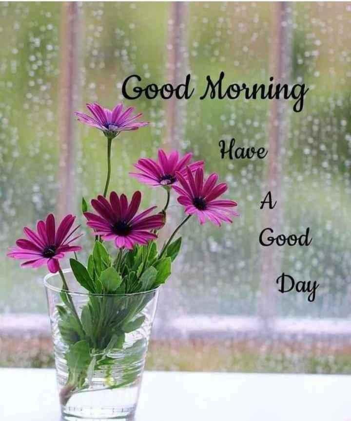 🌅 સુપ્રભાત - * Good Morning Have Good Day - ShareChat
