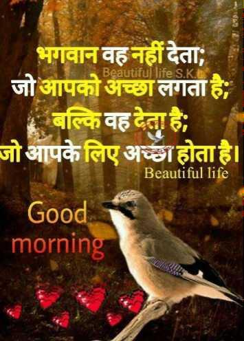🌅 સુપ્રભાત - Beautiful life S . KE भगवान वह नहीं देता ; जो आपको अच्छा लगता है ; बल्कि वह देता है । जो आपके लिए अच्छा होता है । Beautiful life Good morning - ShareChat