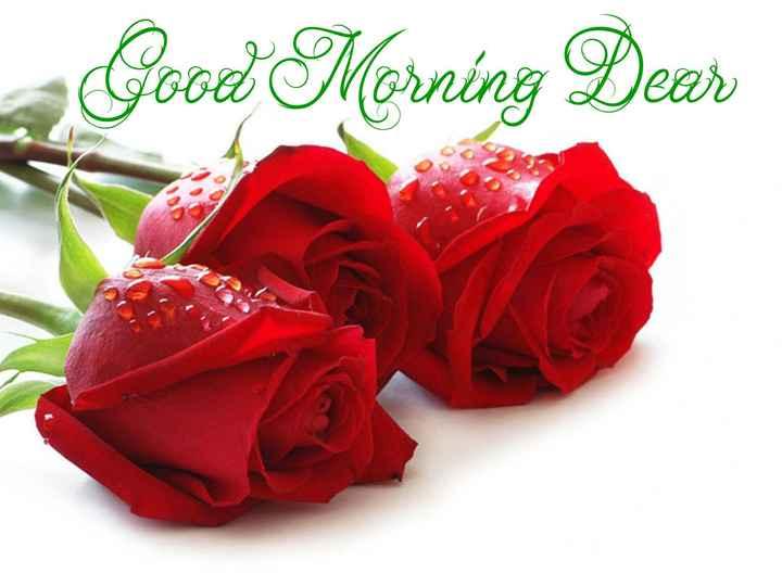 🌅 સુપ્રભાત 🙏 - Good Morning Dear - ShareChat
