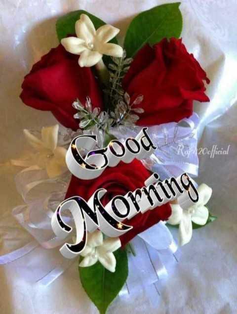 🌅 સુપ્રભાત 🙏 - 000 Raj 120official Morning - ShareChat