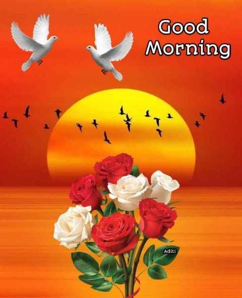🌅 સુપ્રભાત 🙏 - Good Morning Aditi - ShareChat