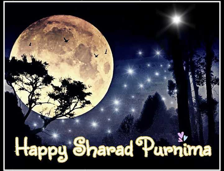 🌅 સુપ્રભાત 🙏 - Happy Sharad Purnima - ShareChat