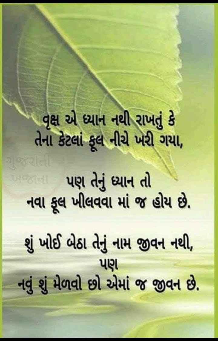 😇 સુવિચાર - * વૃક્ષ એ ધ્યાન નથી રાખતું કે તેના કેટલાં ફૂલ નીચે ખરી ગયા , પણ તેનું ધ્યાન તો નવા ફૂલ ખીલવવા માં જ હોય છે . શું ખોઈ બેઠા તેનું નામ જીવન નથી , પણ નવું શું મેળવો છો એમાં જ જીવન છે . - ShareChat