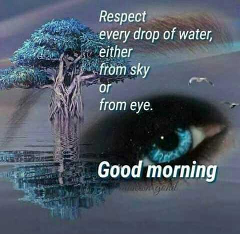 😇 સુવિચાર 😇 - Respect every drop of water , either from sky O from eye . Good morning - ShareChat