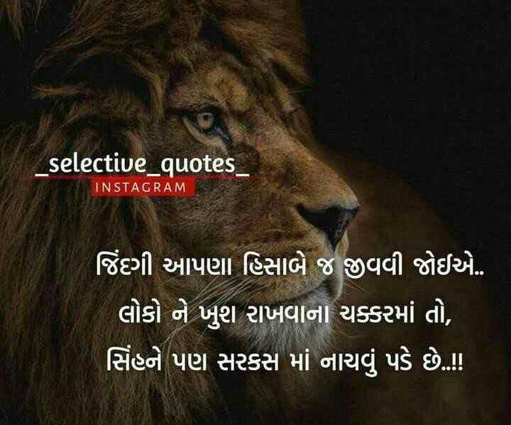 😇 સુવિચાર 😇 - _ selective _ quotes INSTAGRAM ' જિંદગી આપણા હિસાબે જ જીવવી જોઈએ . લોકો ને ખુશ રાખવાના ચક્કરમાં તો , સિંહને પણ સરકસ માં નાચવું પડે છે . ! ! - ShareChat