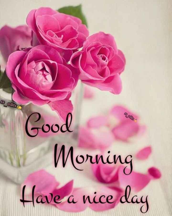 😇 સુવિચાર - ssedits 53 cdits Good Morning Have a nice day - ShareChat